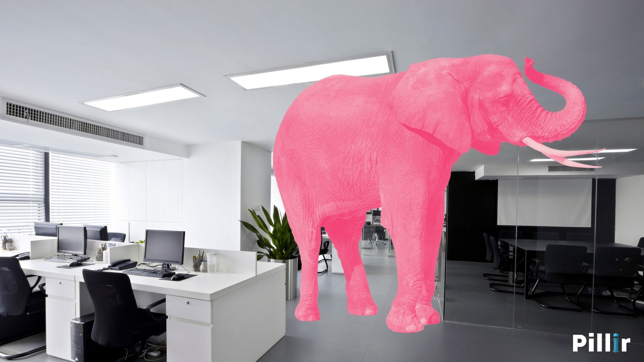 SAP's pink elephant in the room